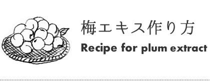 梅肉エキスの作り方